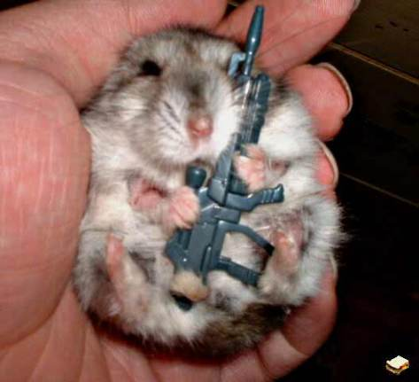 army_hamster